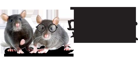 rat_smart